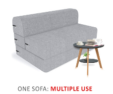 Twinz Sofa Cum Bed